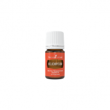 Helichrysum - Slamiha (Slamienka) 5 ml