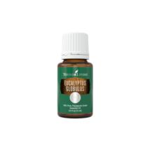 Eucalyptus globulus (guľatoplodý) 15 ml