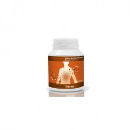 mastichový prášok s inulínom podpora trávenia